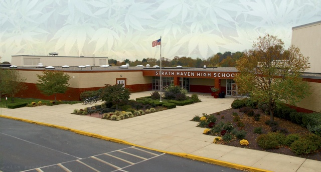 Pot leaves in sky over Strath Haven High School